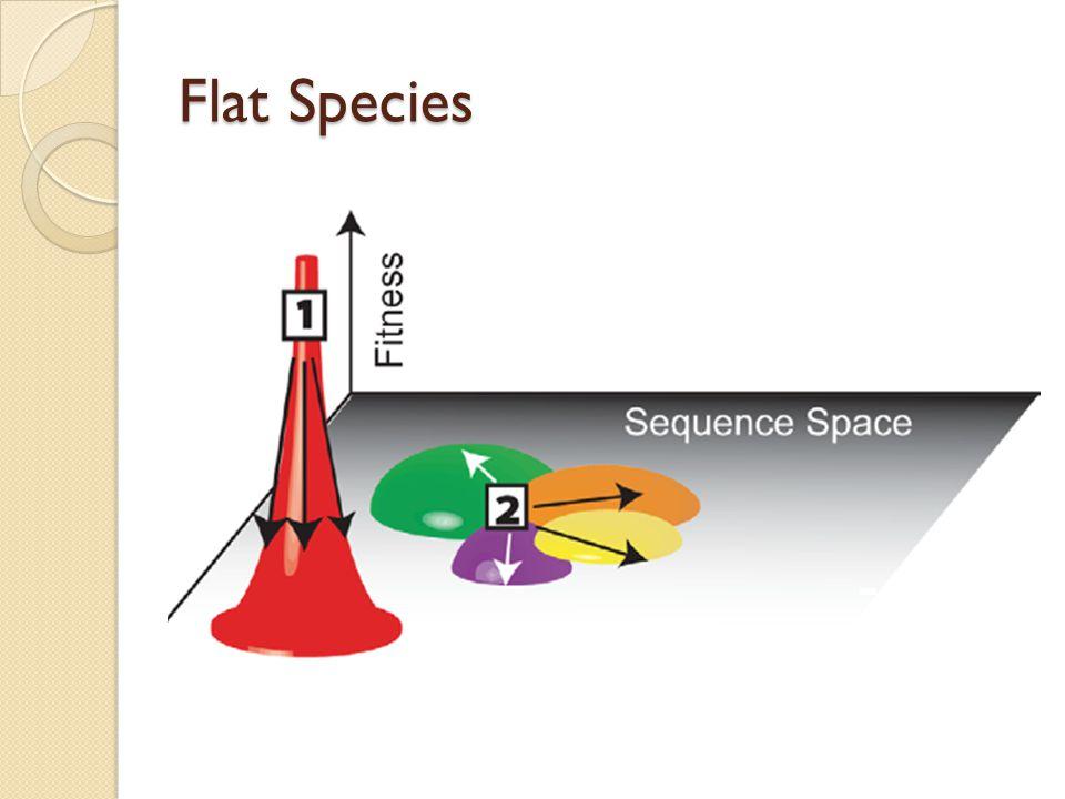 Flat Species
