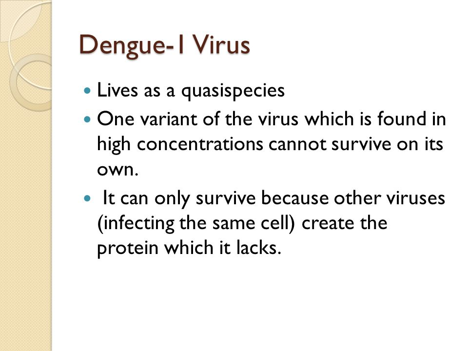 Dengue-1 Virus Lives as a quasispecies One variant of the virus which is found in high concentrations cannot survive on its own.