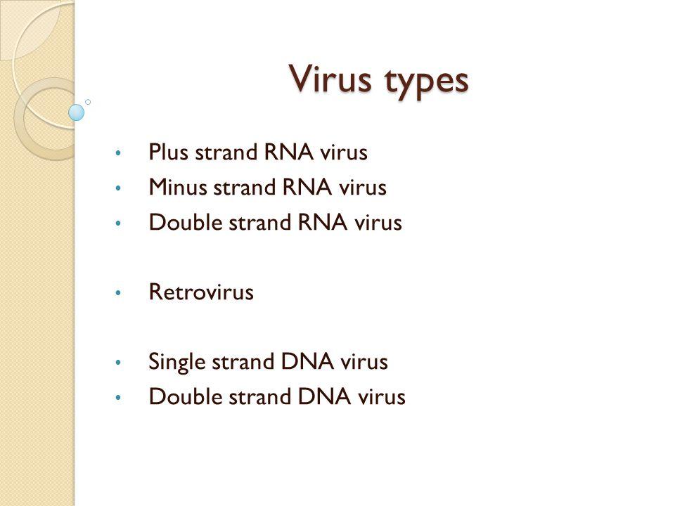 Virus types Plus strand RNA virus Minus strand RNA virus Double strand RNA virus Retrovirus Single strand DNA virus Double strand DNA virus