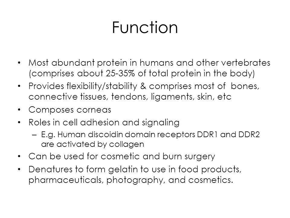 Function Most abundant protein in humans and other vertebrates (comprises about 25-35% of total protein in the body) Provides flexibility/stability &
