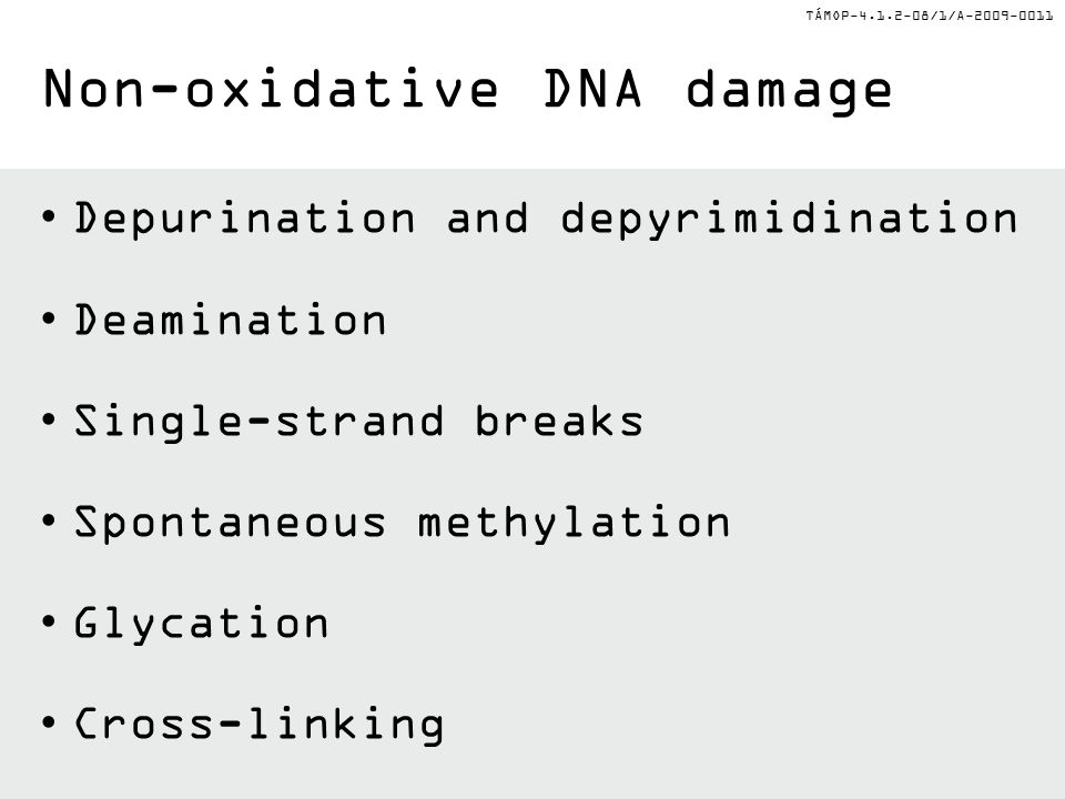 TÁMOP-4.1.2-08/1/A-2009-0011 Depurination and depyrimidination Deamination Single-strand breaks Spontaneous methylation Glycation Cross-linking Non-oxidative DNA damage