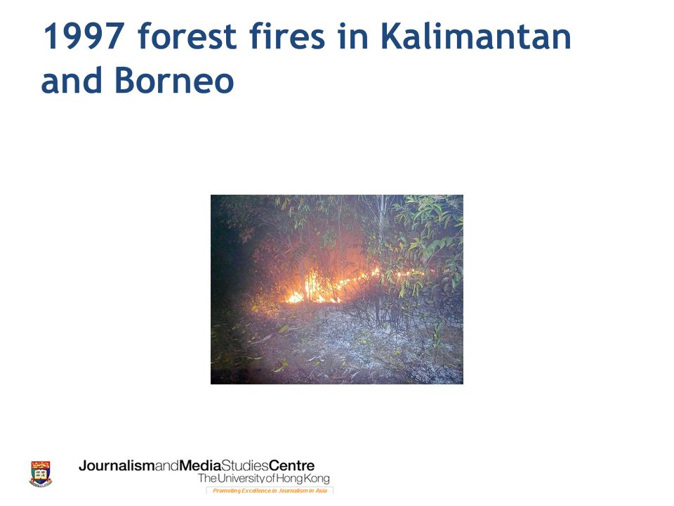 1997 forest fires in Kalimantan and Borneo