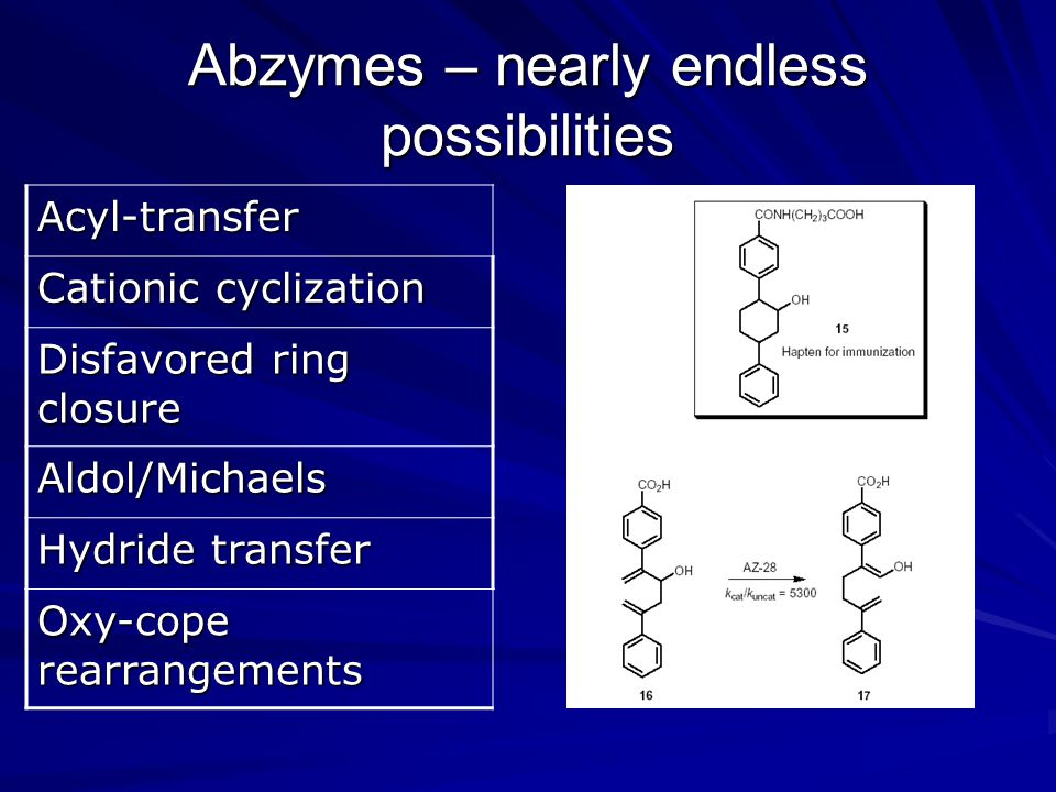 Abzymes – nearly endless possibilities Acyl-transfer Cationic cyclization Disfavored ring closure Aldol/Michaels Hydride transfer Oxy-cope rearrangements
