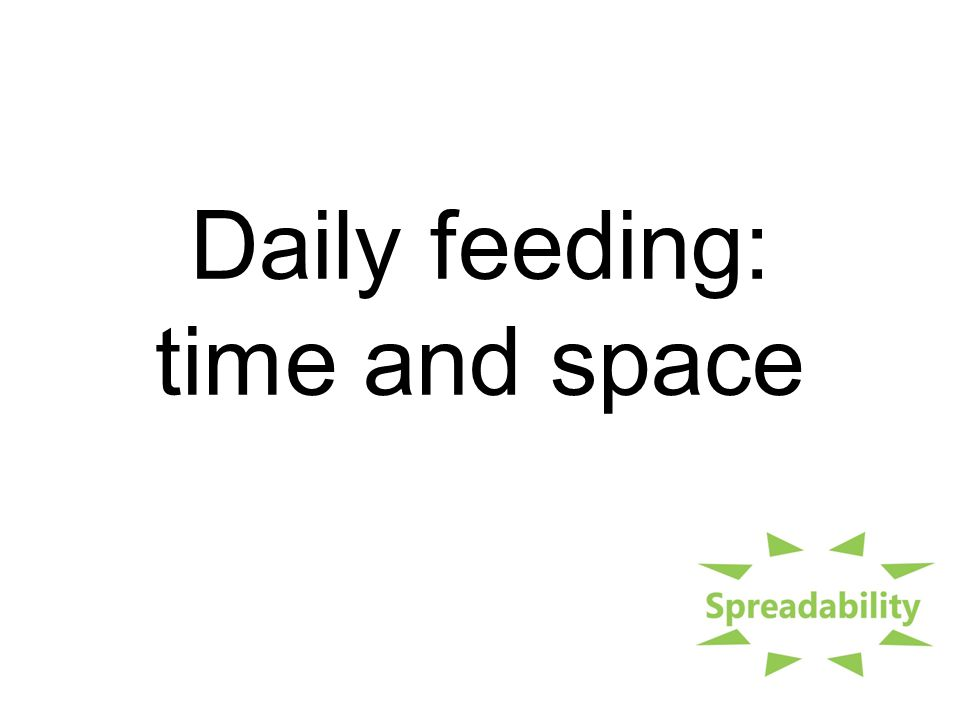 Daily feeding: time and space