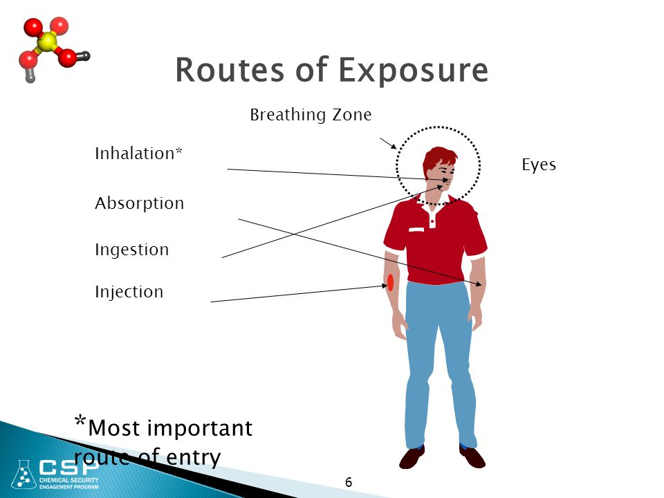 6 Routes of Exposure Breathing Zone Inhalation* Absorption Ingestion Injection * Most important route of entry Eyes