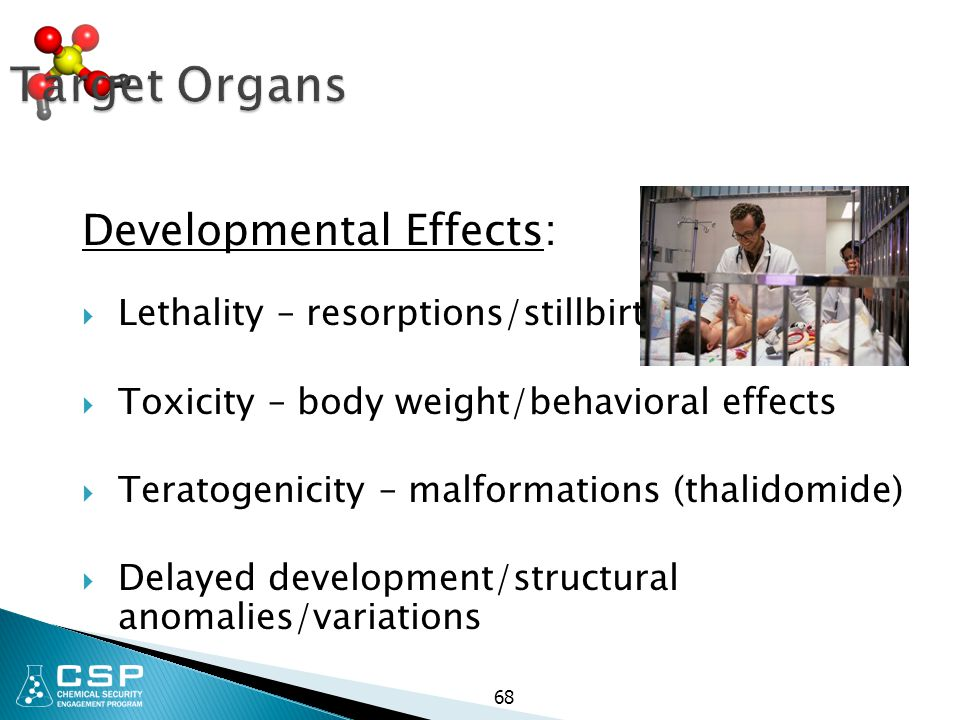 68 Target Organs Developmental Effects:  Lethality – resorptions/stillbirths  Toxicity – body weight/behavioral effects  Teratogenicity – malformat