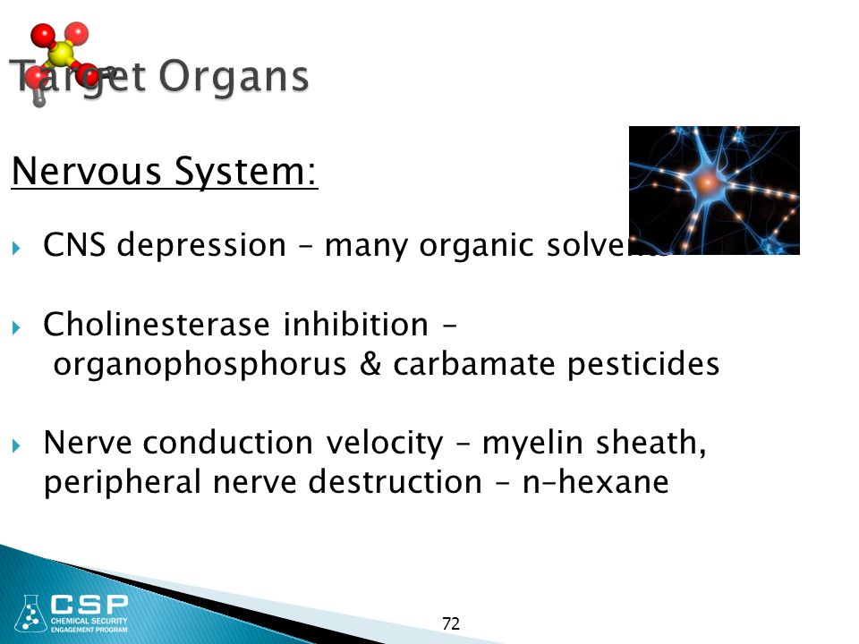 72 Target Organs Nervous System:  CNS depression – many organic solvents  Cholinesterase inhibition – organophosphorus & carbamate pesticides  Nerv