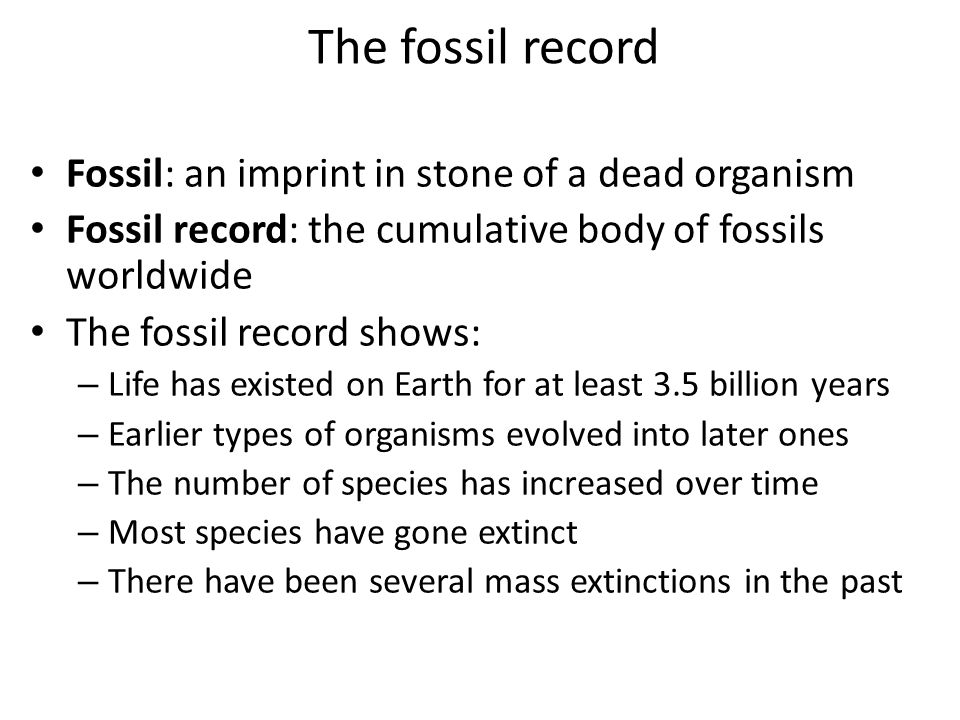 The fossil record Fossil: an imprint in stone of a dead organism Fossil record: the cumulative body of fossils worldwide The fossil record shows: – Life has existed on Earth for at least 3.5 billion years – Earlier types of organisms evolved into later ones – The number of species has increased over time – Most species have gone extinct – There have been several mass extinctions in the past