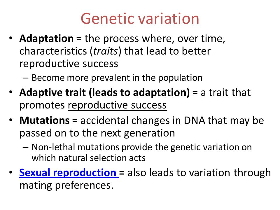 Genetic variation Adaptation = the process where, over time, characteristics (traits) that lead to better reproductive success – Become more prevalent in the population Adaptive trait (leads to adaptation) = a trait that promotes reproductive success Mutations = accidental changes in DNA that may be passed on to the next generation – Non-lethal mutations provide the genetic variation on which natural selection acts Sexual reproduction = also leads to variation through mating preferences.