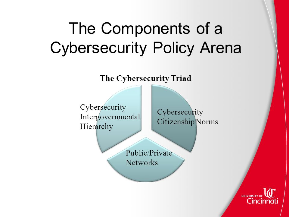 The Components of a Cybersecurity Policy Arena