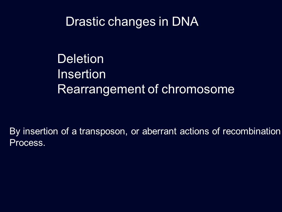 Drastic changes in DNA Deletion Insertion Rearrangement of chromosome By insertion of a transposon, or aberrant actions of recombination Process.