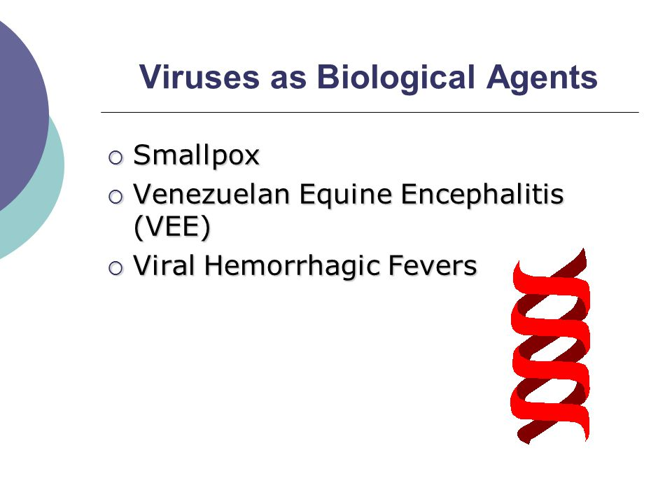Viruses as Biological Agents  Smallpox  Venezuelan Equine Encephalitis (VEE)  Viral Hemorrhagic Fevers