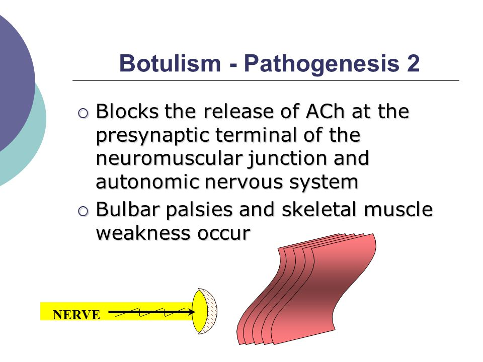 Botulism - Pathogenesis 2  Blocks the release of ACh at the presynaptic terminal of the neuromuscular junction and autonomic nervous system  Bulbar palsies and skeletal muscle weakness occur MUSCLE NERVE