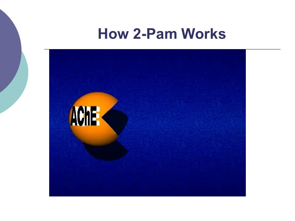 How 2-Pam Works