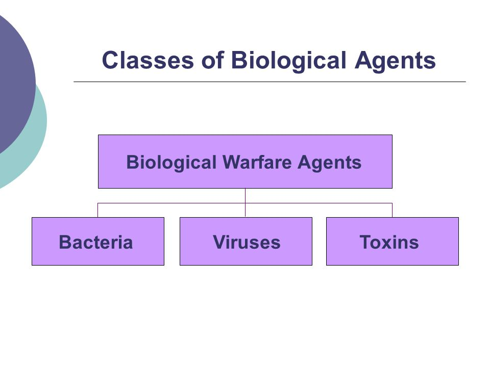 Classes of Biological Agents BacteriaVirusesToxins Biological Warfare Agents