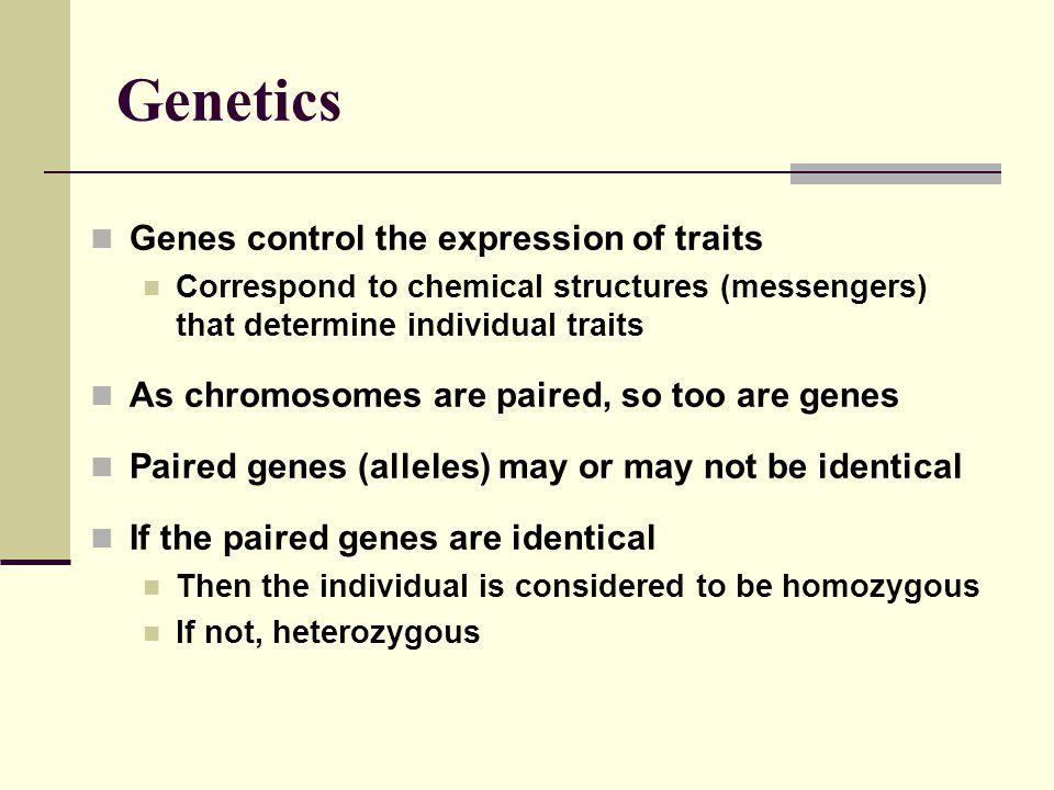 Genetic Abnormalities Hereditary Equine Regional Dermal Asthenia Aka HERDA Linked to Poco Bueno Line Collagen defect Skin detaches