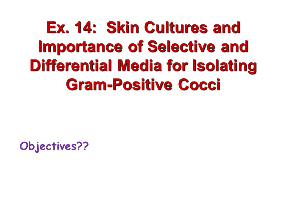Ex. 14: Skin Cultures and Importance of Selective and Differential Media for Isolating Gram-Positive Cocci Objectives??