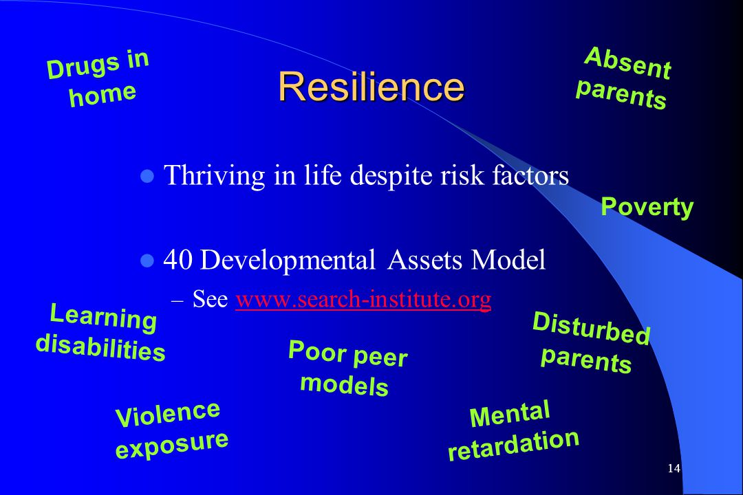 14 Resilience Thriving in life despite risk factors 40 Developmental Assets Model – See www.search-institute.orgwww.search-institute.org Drugs in home