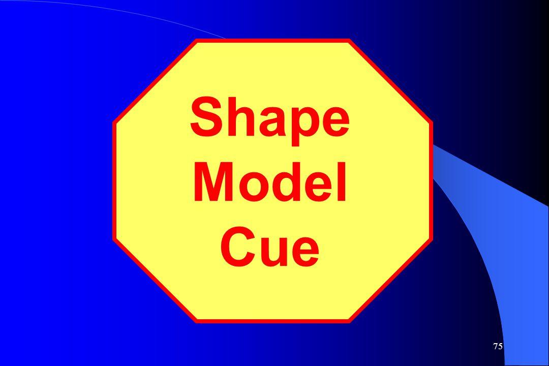75 Shape Model Cue