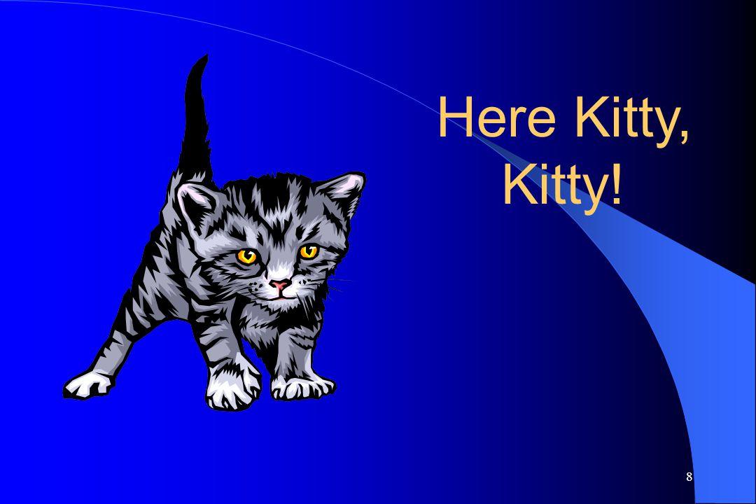 8 Here Kitty, Kitty!