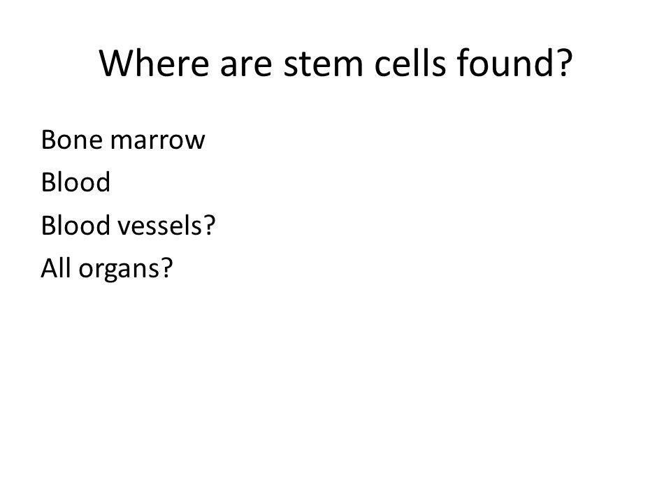 Where are stem cells found? Bone marrow Blood Blood vessels? All organs?