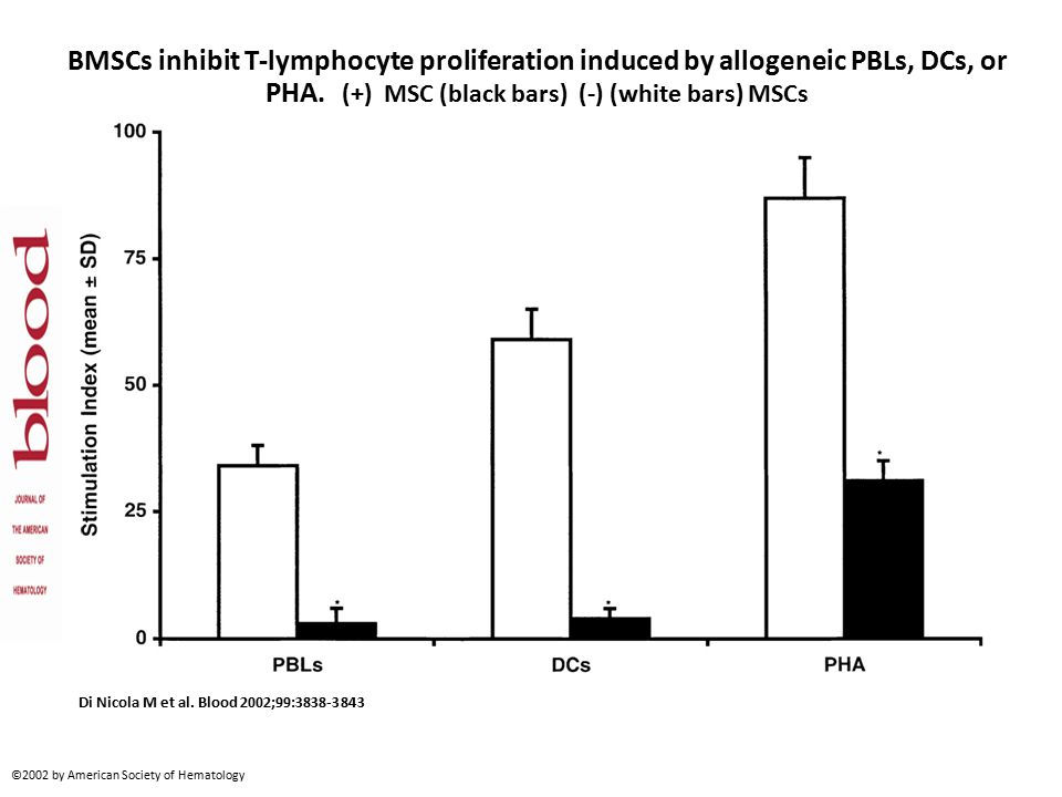BMSCs inhibit T-lymphocyte proliferation induced by allogeneic PBLs, DCs, or PHA.