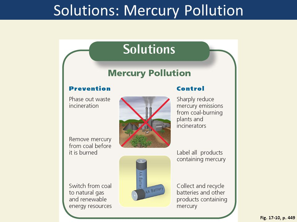 Solutions: Mercury Pollution Fig. 17-10, p. 449
