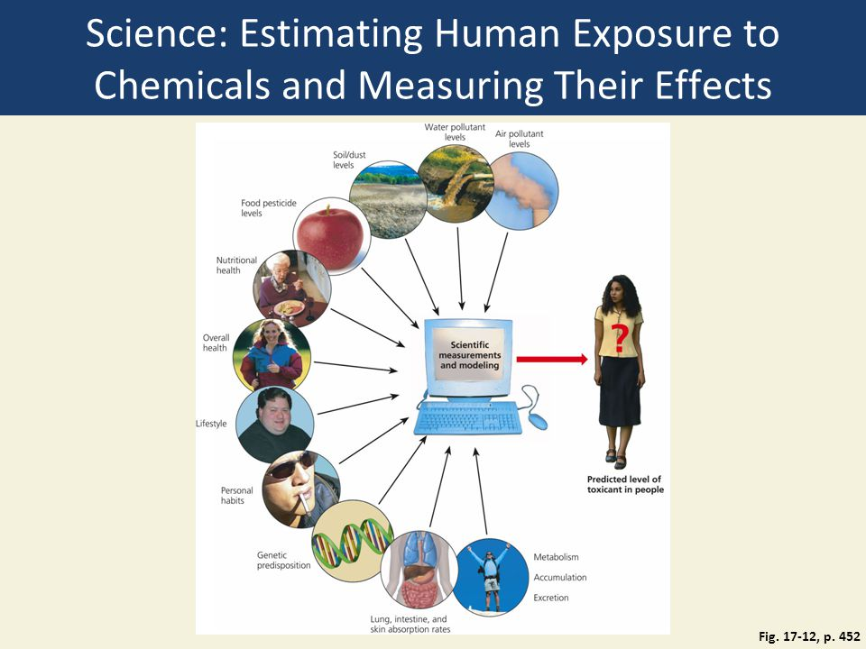 Science: Estimating Human Exposure to Chemicals and Measuring Their Effects Fig. 17-12, p. 452