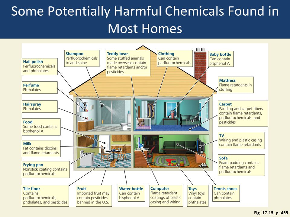 Some Potentially Harmful Chemicals Found in Most Homes Fig. 17-15, p. 455