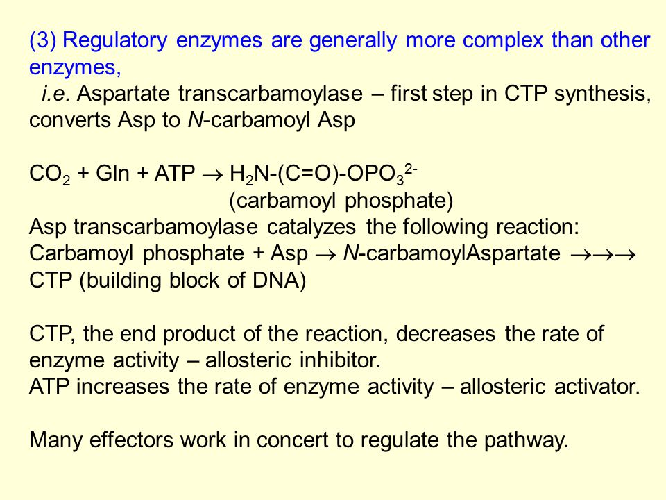 (3) Regulatory enzymes are generally more complex than other enzymes, i.e. Aspartate transcarbamoylase – first step in CTP synthesis, converts Asp to