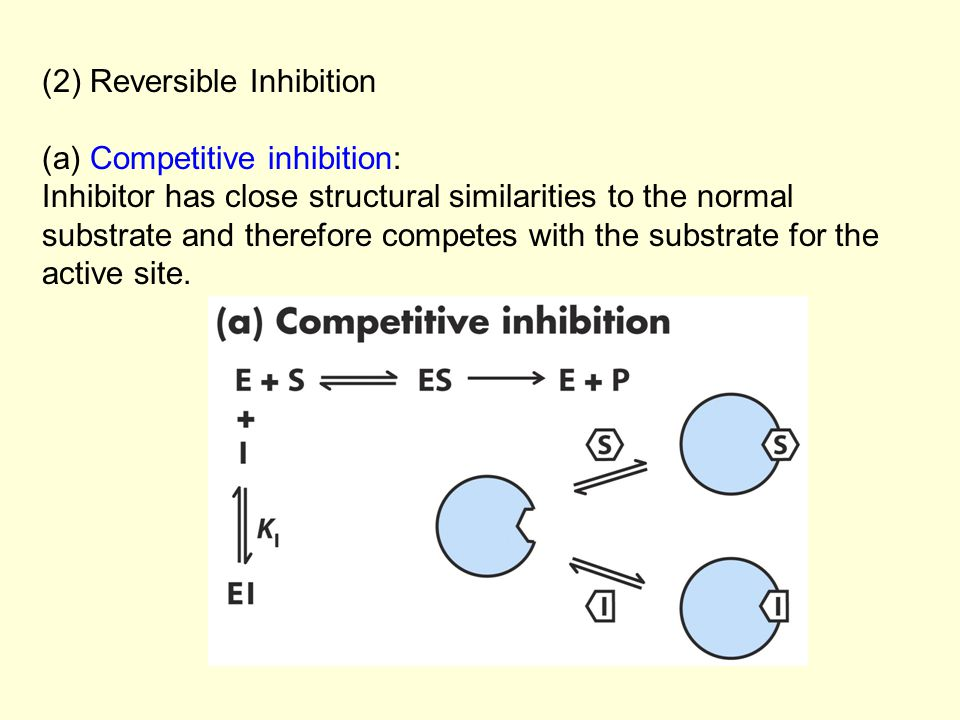 (2) Reversible Inhibition (a) Competitive inhibition: Inhibitor has close structural similarities to the normal substrate and therefore competes with