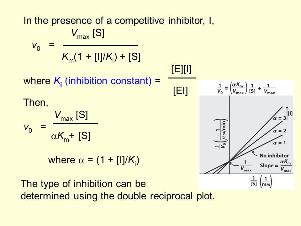 In the presence of a competitive inhibitor, I, V max [S] v 0 = K m (1 + [I]/K i ) + [S] [E][I] where K i (inhibition constant) = [EI] Then, V max [S]