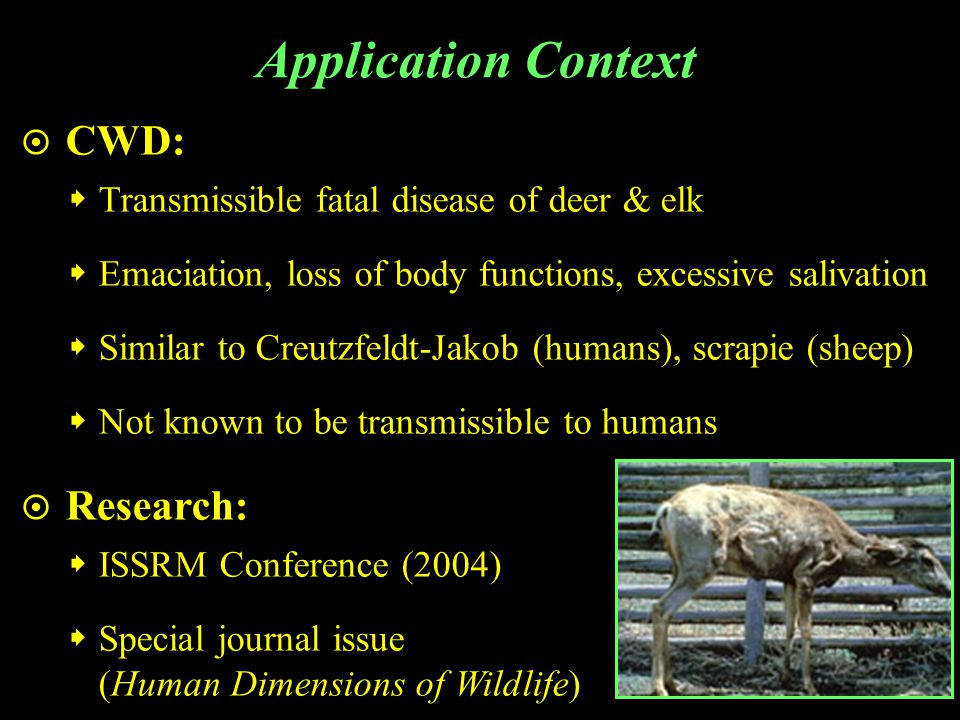 PCI – Non-Lethal Actions Strongly Favor Unsure Strongly Oppose Action Support Do nothing to control CWD and let the disease take its natural course Monitor CWD and wait for complete test results before managing Hunted in Hunter dropouts Hunter dropouts 2002 season Weak CWD CWD