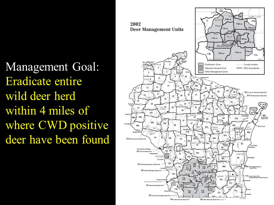 Management Goal: Eradicate entire wild deer herd within 4 miles of where CWD positive deer have been found