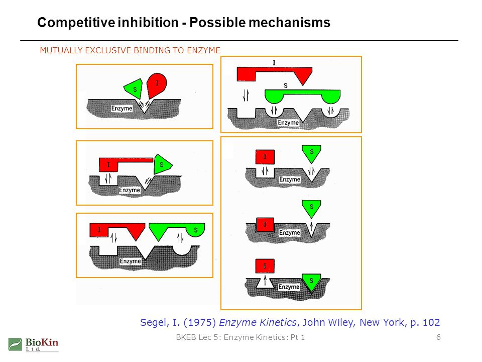 BKEB Lec 5: Enzyme Kinetics: Pt 16 Competitive inhibition - Possible mechanisms Segel, I. (1975) Enzyme Kinetics, John Wiley, New York, p. 102 MUTUALL