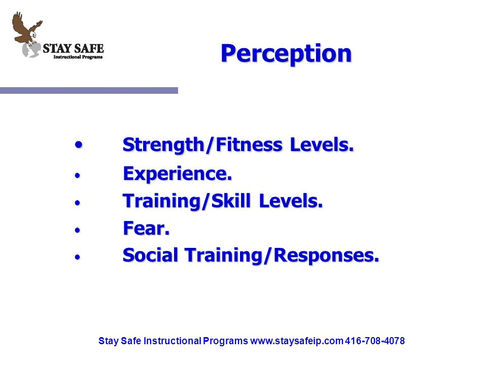 Stay Safe Instructional Programs www.staysafeip.com 416-708-4078 Perception Strength/Fitness Levels. Strength/Fitness Levels. Experience. Experience.