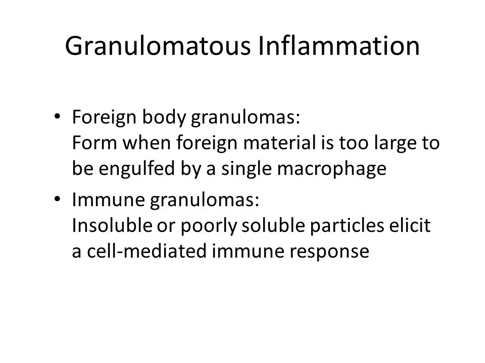 Granulomatous Inflammation Foreign body granulomas: Form when foreign material is too large to be engulfed by a single macrophage Immune granulomas: I