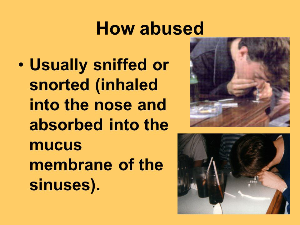 How abused Usually sniffed or snorted (inhaled into the nose and absorbed into the mucus membrane of the sinuses).