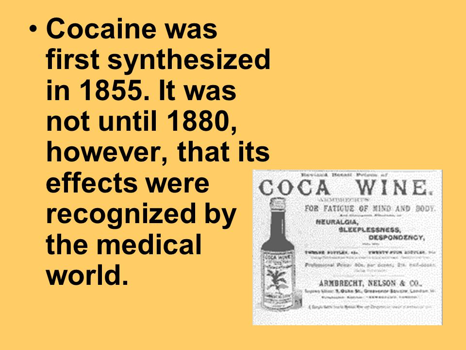 Cocaine was first synthesized in 1855.