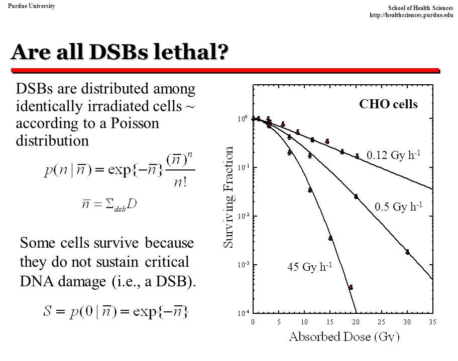 School of Health Sciences http://healthsciences.purdue.edu Purdue University Repair-misrepair (RMR) model DSBs are created and rejoined Repair processes convert fraction (1-a) of the initial DSBs to lethal or non-lethal mutations Non-lethal Lethal C.A.