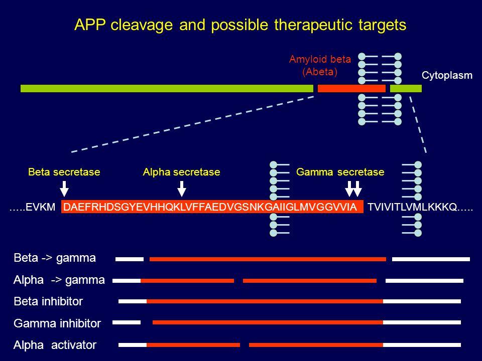Amyloid beta (Abeta) Cytoplasm …..EVKMDAEFRHDSGYEVHHQKLVFFAEDVGSNKGAIIGLMVGGVVIATVIVITLVMLKKKQ…..