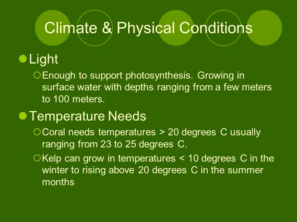 Climate & Physical Conditions Light  Enough to support photosynthesis.