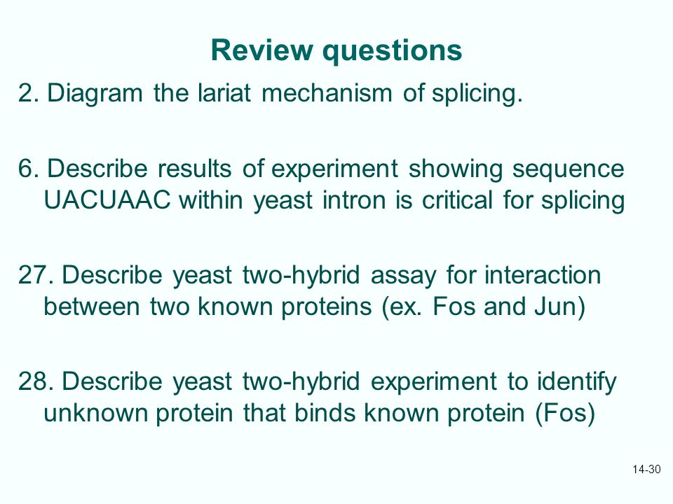 Review questions 2. Diagram the lariat mechanism of splicing.