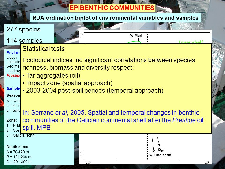 EPIBENTHIC COMMUNITIES 277 species 114 samples Environmental variables Depth Latitude Sediment: fine sands, coarse sand, Q 50 sorting coefficient, org
