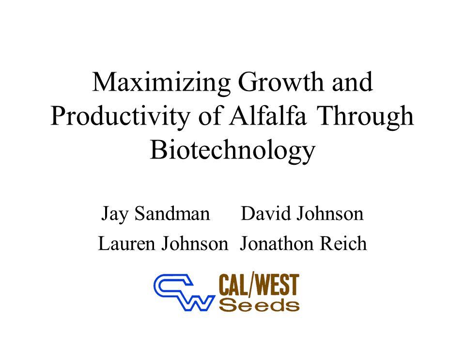 Maximizing Growth and Productivity of Alfalfa Through Biotechnology Jay SandmanDavid Johnson Lauren Johnson Jonathon Reich