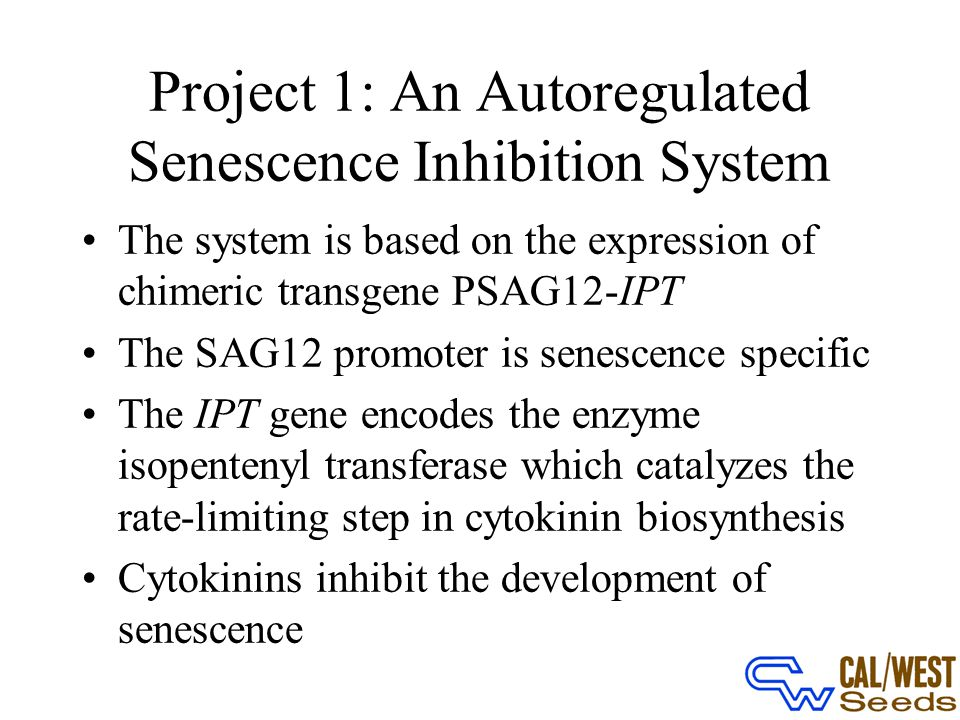 Project 1: An Autoregulated Senescence Inhibition System The system is based on the expression of chimeric transgene PSAG12-IPT The SAG12 promoter is