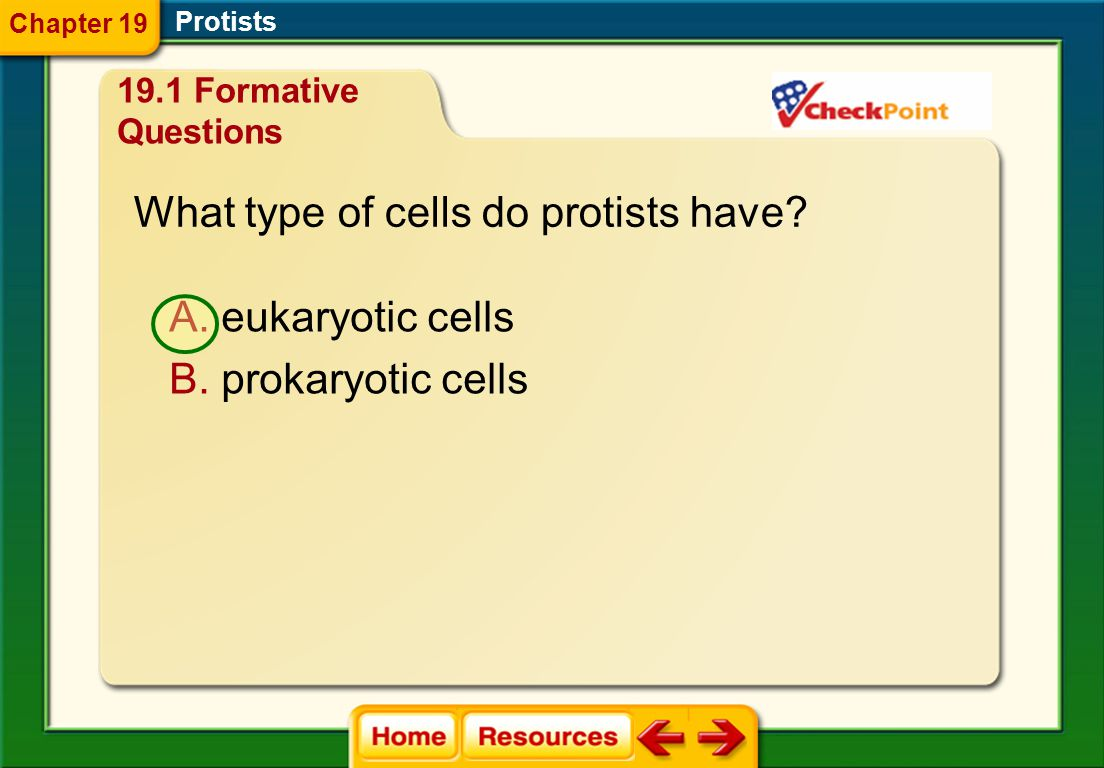 Which is not a characteristic of protists? A. unicellular B. multicellular Protists Chapter 19 C. might have formed through endosymbiosis D. prokaryot