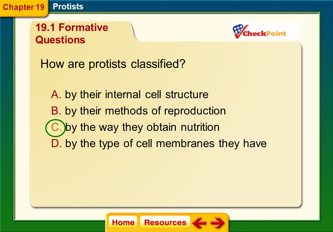 What type of cells do protists have? A. eukaryotic cells B. prokaryotic cells Protists Chapter 19 19.1 Formative Questions