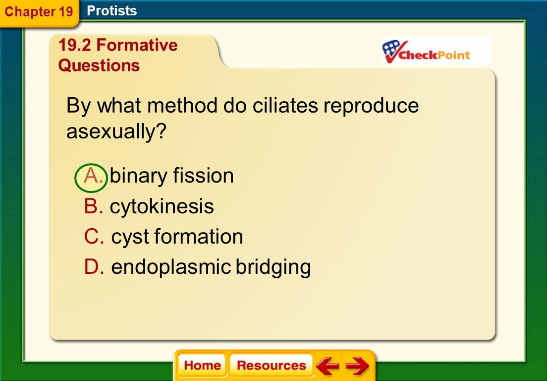 Protists A. cellulose B. ectoplasm C. pellicle D. plasma membrane Chapter 19 19.2 Formative Questions
