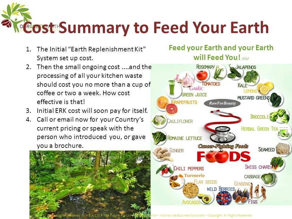 "Cost Summary to Feed Your Earth 1.The Initial ""Earth Replenishment Kit"" System set up cost. 2.Then the small ongoing cost....and the processing of all"
